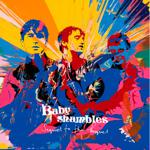 babyshambles_sequel_to_the_prequel-portada