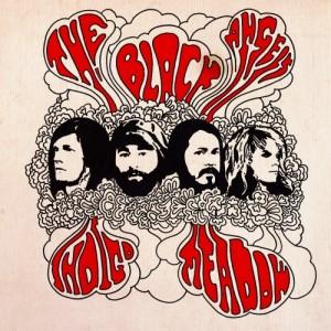 The-Black-Angels-Indigo-Meadow-Album-Cover-e1358880938544